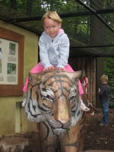ich auf dem tiger im dortmunder zoo